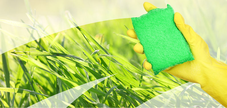 Next week we increase green cleaning